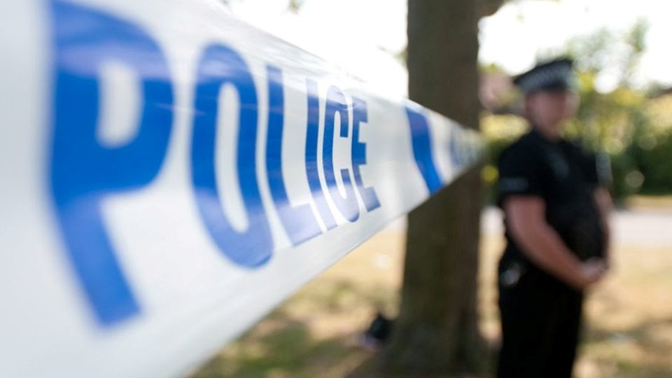 Police investigation into suspended employees